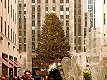 New York,  Rockefeller Center,  Click for large image