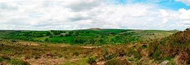 Dartmoor  -  Click for large image !